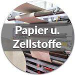 Bild-papier-und-zellstoffindustrie